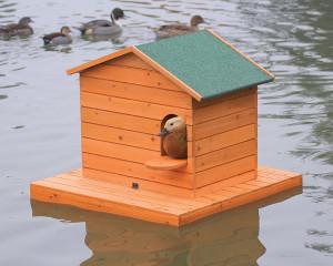 Îlot flottant et nichoir à chicane grand modèle pour canards